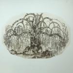 """Knorriger Baum"""