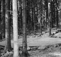 Nohfelden-Bosen, Robertson, Bodengestaltung