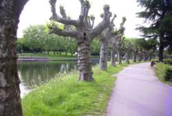 Saarbrücken, Kultur-Ufer-Promenade