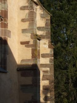 Aspekte: Wasserschlagfiguren im Saarland